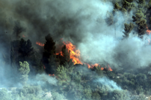 Fire burning in Jerusalem Forest near Yad Vashem