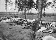 Armenians slaughtered by Turkish soldiers. Massacres like this were carried out on a massive scale by Turkish forces.