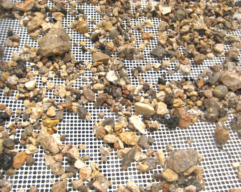 One of our sifting trays. What treasures do you see in the rubble?
