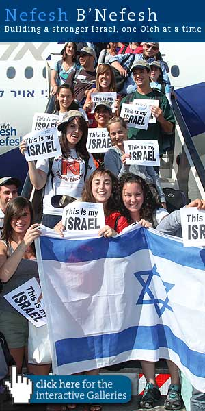 Another planeload of new Israelis brought here by Nefesh b'Nefesh.