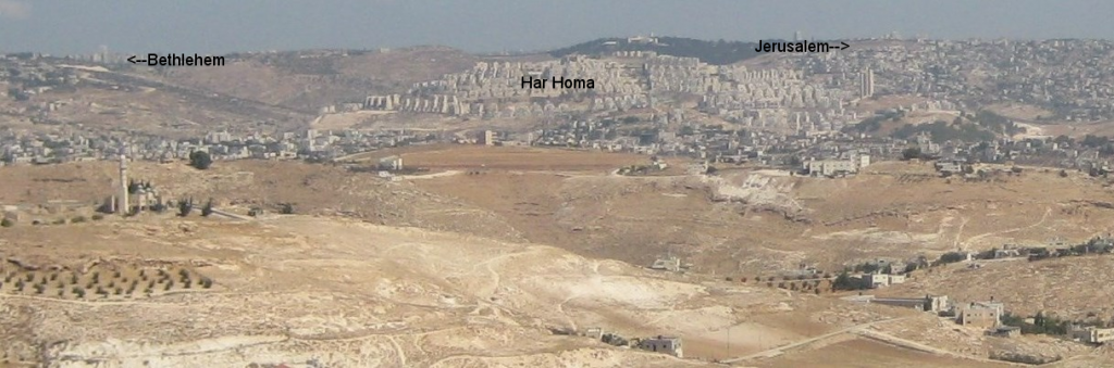 A view of Har Homa from Judea.
