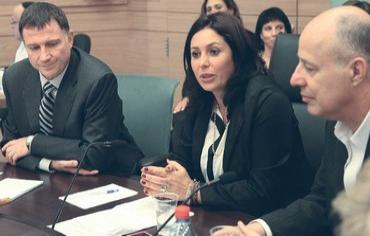 Part of the Interior Committee--the woman is Chairwoman Miri Regev (picture source: Jpost).