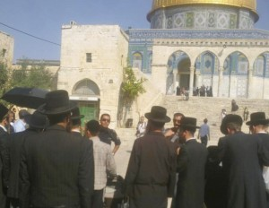 A group of ultra-orthodox on the Temple Mount yesterday (picture source: Temple Mount Foundation).
