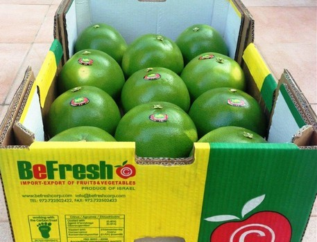 A box of BeFresh Israeli fruit on its way to Russia.