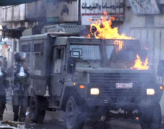 """Amnesty International: Palestinian """"protests"""" do not pose a threat to IDF soldiers."""