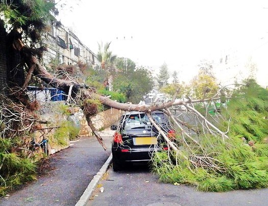 Heavy winds are beginning to bring the storm ashore. This scene is from Stern St. in Jerusalem (photo: Walla).