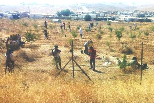 Look closely at the fence. Note the cameraman. Also note the planters out in the field (picture: Regavim).