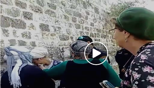 "This is a screen shot from a video (hence the ""play"" arrow). You can just see the head of the policeman as he approaches the woman beside the wall."