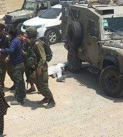 The dead terrorist at Tekoa yesterday.