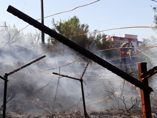 A Jewish community's vineyard goes up in flames yesterday at Nahliel. Note the community firefighters trying to douse the flames.